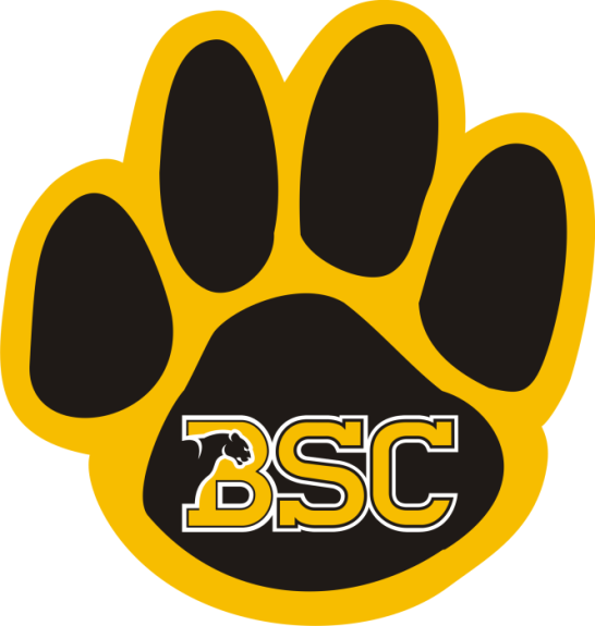 Laser Magic Birmingham Southern College Magnet C Bsc
